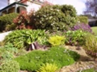 David Stephen Gardening Services (Taroona)